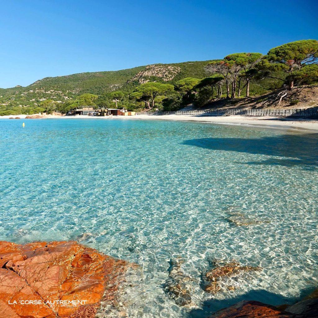 La plage paradisiaque de Palombaggia en Corse