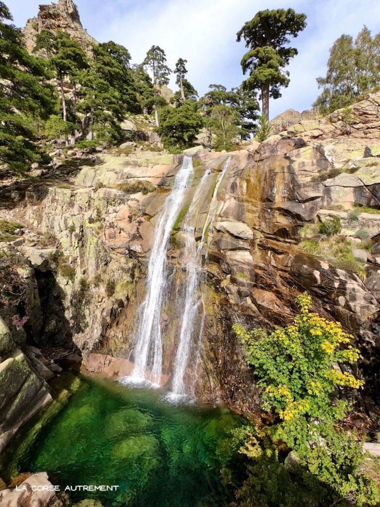 cascade radule