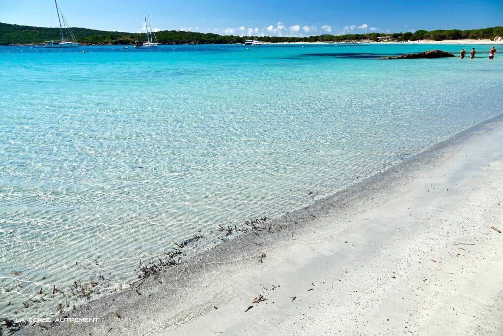 La plage de La Rondinara en Corse du Sud