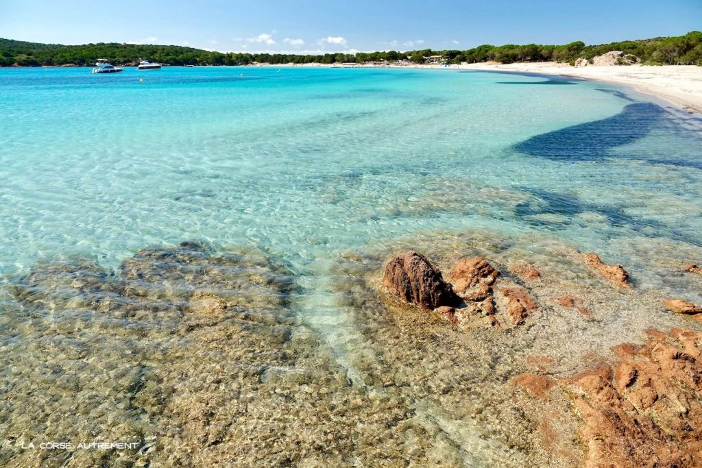 La plage de Rondinara en Corse du Sud