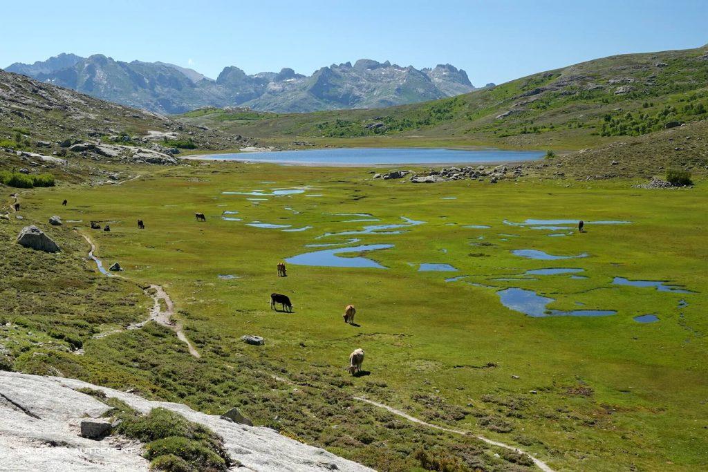 Lac de Nino, Corse