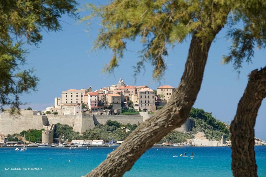 La citadelle de Calvi en Corse